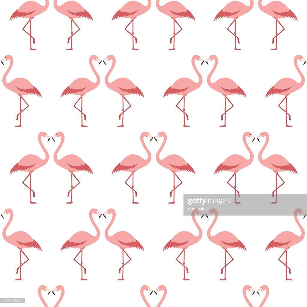 Flamingos : Vectorkunst