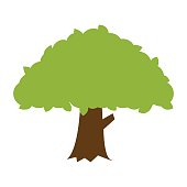 Flat color banyan tree icon