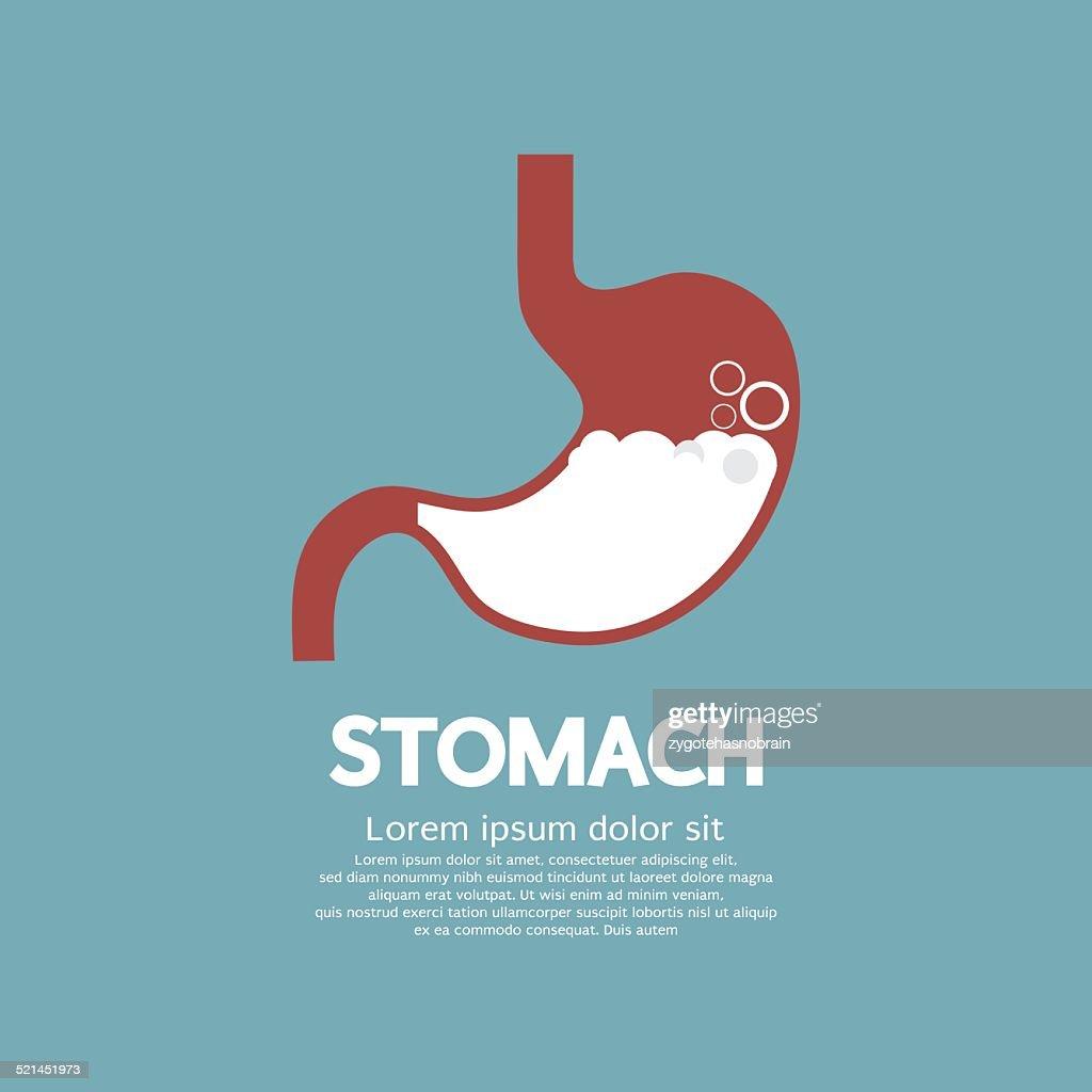Flat Design Human's Stomach