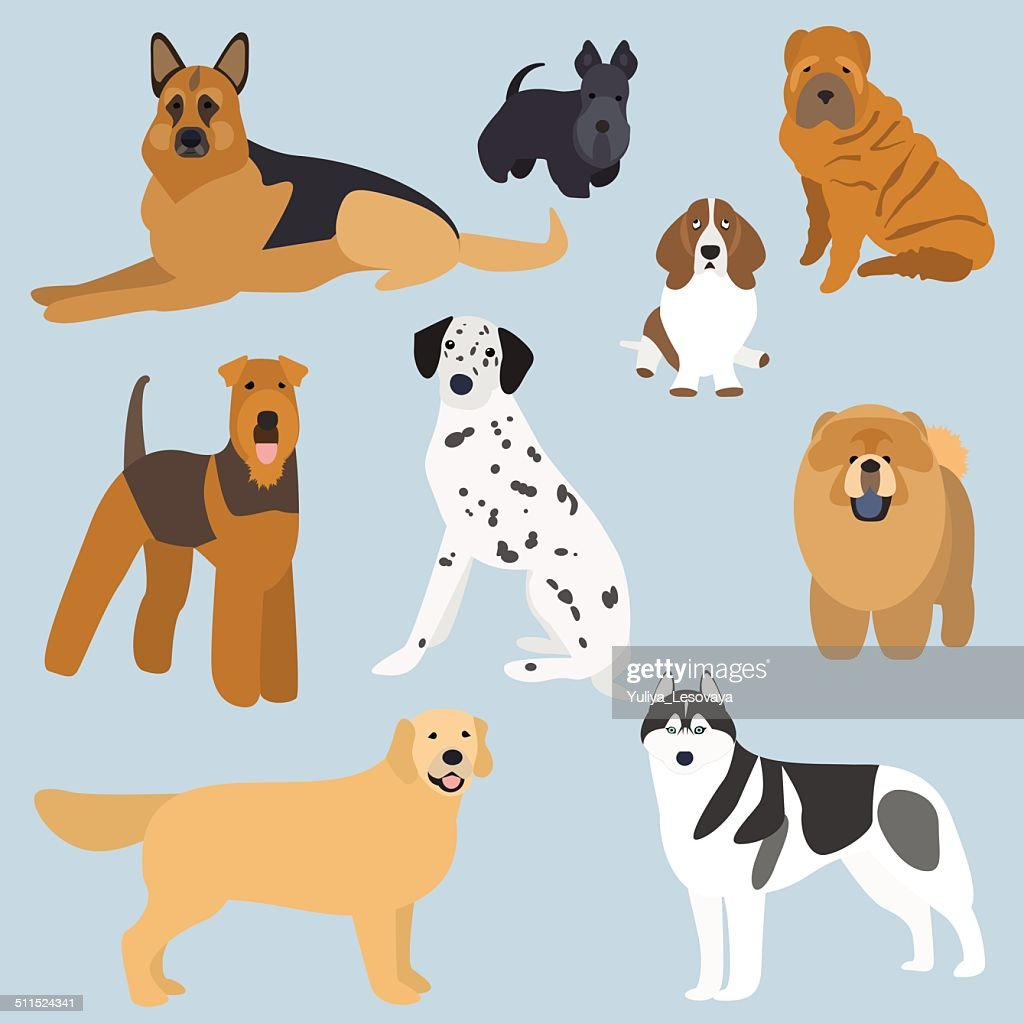 Flat design types of dogs part 2
