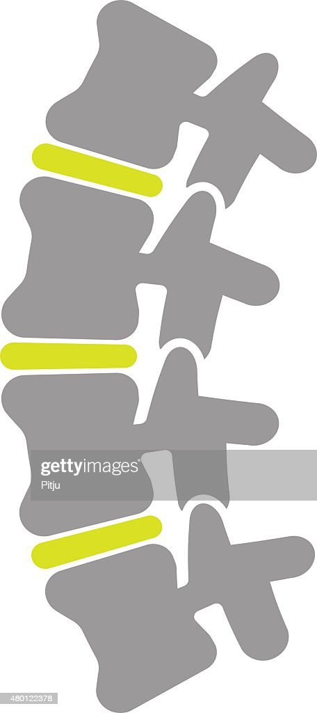Flat Icon of Spine Isolated on White Background