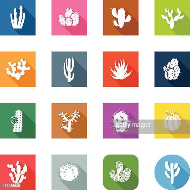 bildbanksillustrationer, clip art samt tecknat material och ikoner med flat icons - cactuses - taggig buske