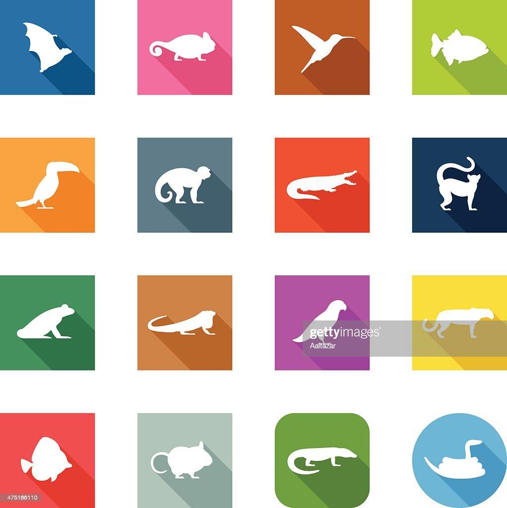 Flat Icons - Exotic Animals