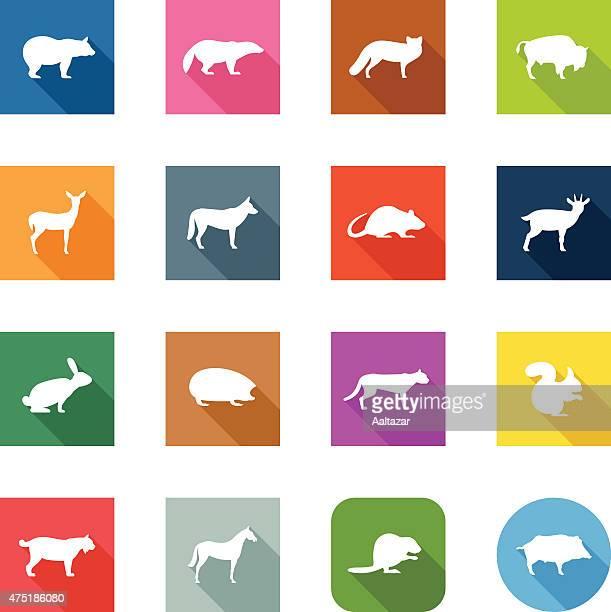 Flat Icons - Wild Animals