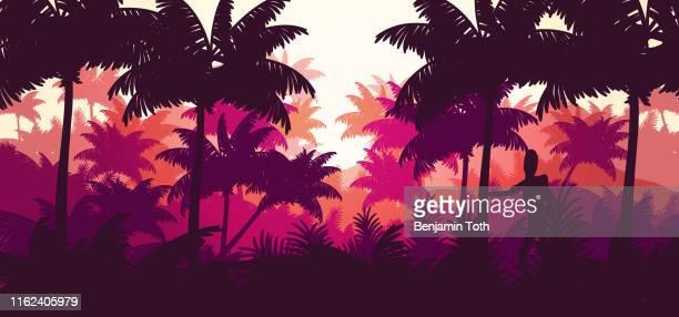 熱帯のビーチの背景に平らな最小限のヤシの木の森 - 北ヨーロッパ点のイラスト素材/クリップアート素材/マンガ素材/アイコン素材