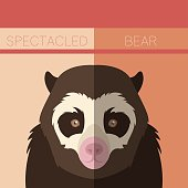 Flat postcard with Spectacled Bear