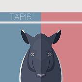 Flat postcard with Tapir