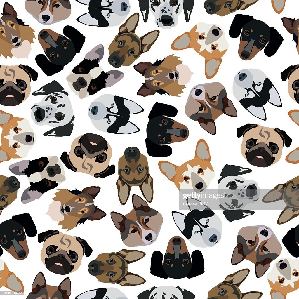 flat seamless pattern pedigree dogs