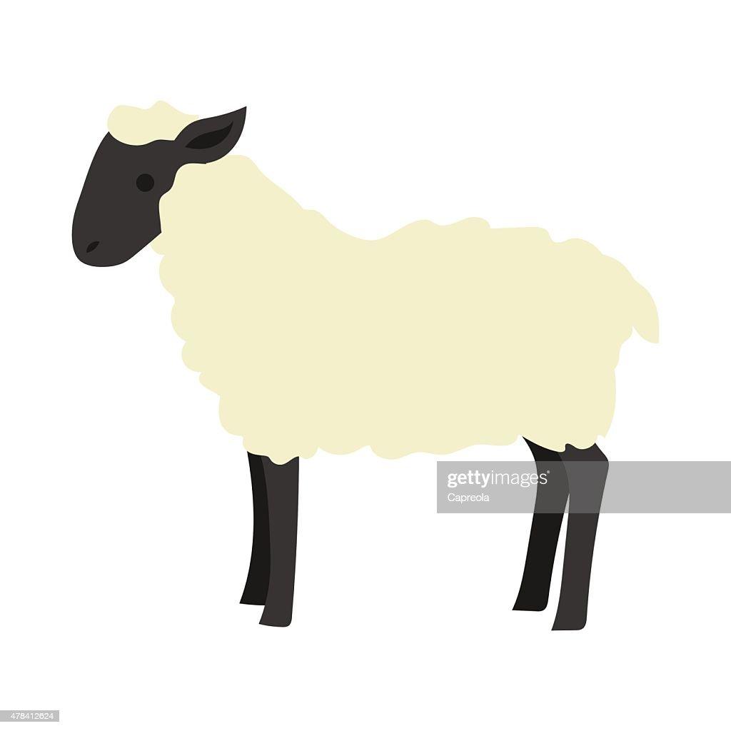 Flat sheep illustration