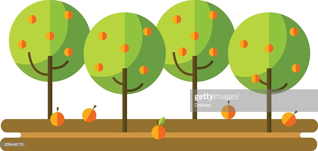 Flat vector illustration apple orchard and harvest fruit