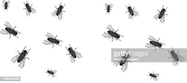 flies - insect stock illustrations