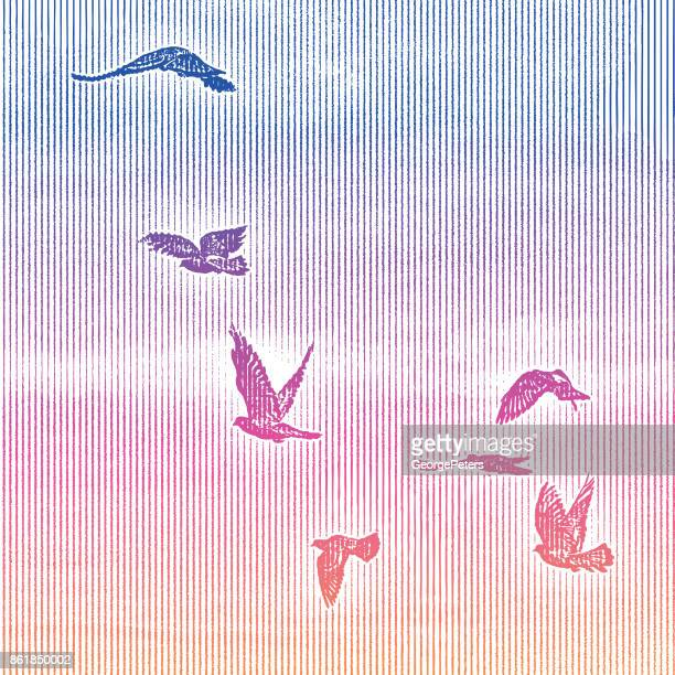 Vogelschwarm in Sonnenuntergang Himmel fliegen