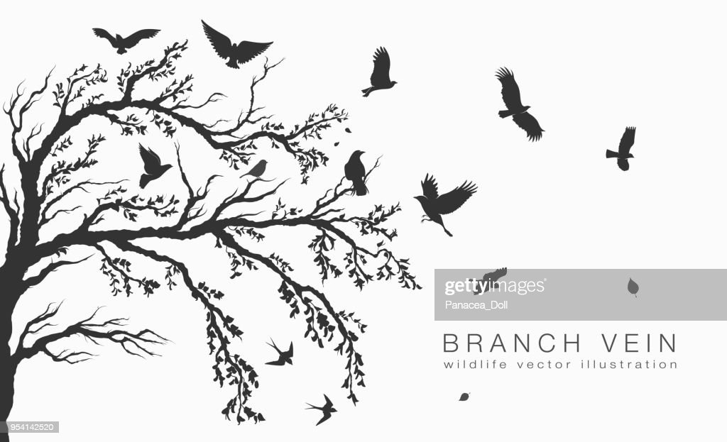 flock of flying birds on tree branch tree