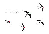 flock of swallow birds illustration