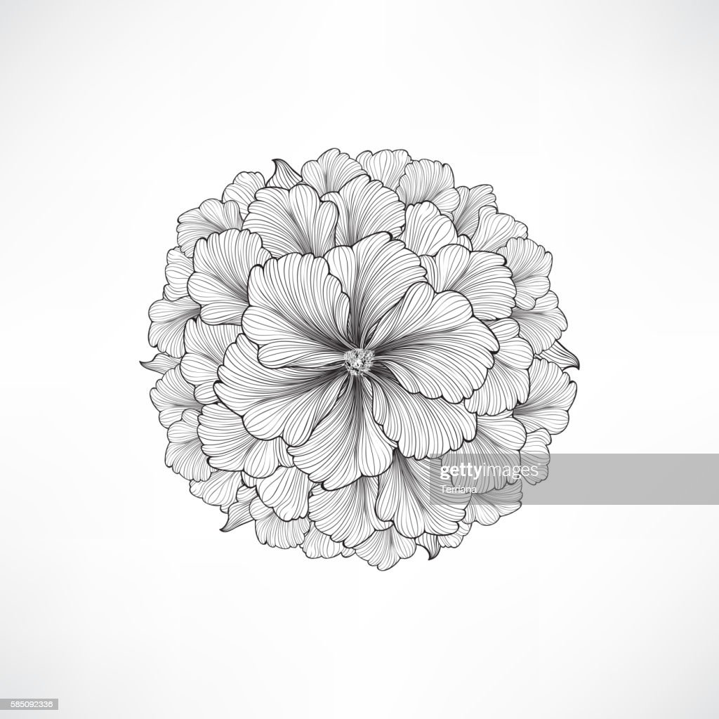 Floral background. Engraving decor with flower dahlia.