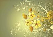 floral background for you designe