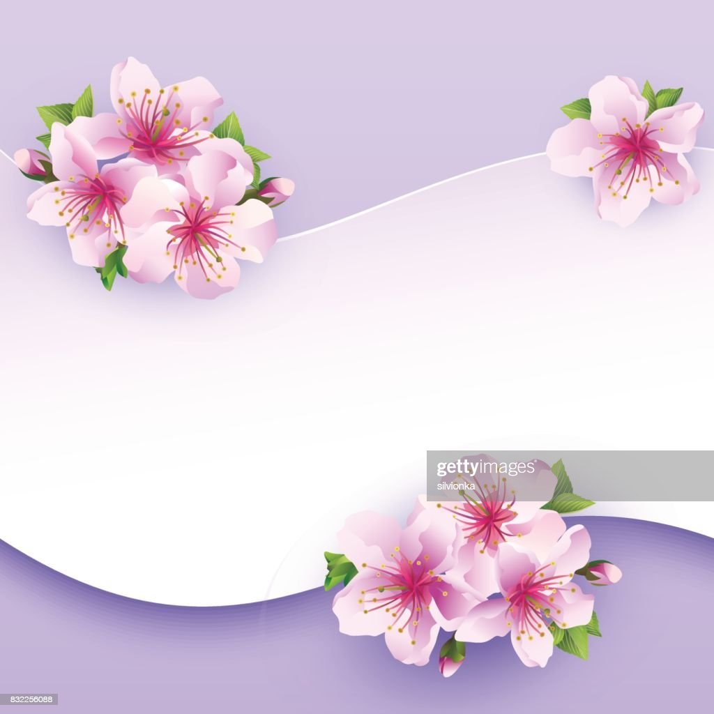 Floral background, greeting card with flower sakura