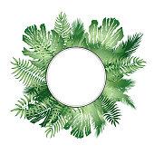 Floral background. Summer leaves flourish border. Plam leaf frame