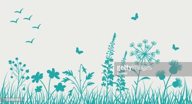 illustrations, cliparts, dessins animés et icônes de fond floral . - herbe