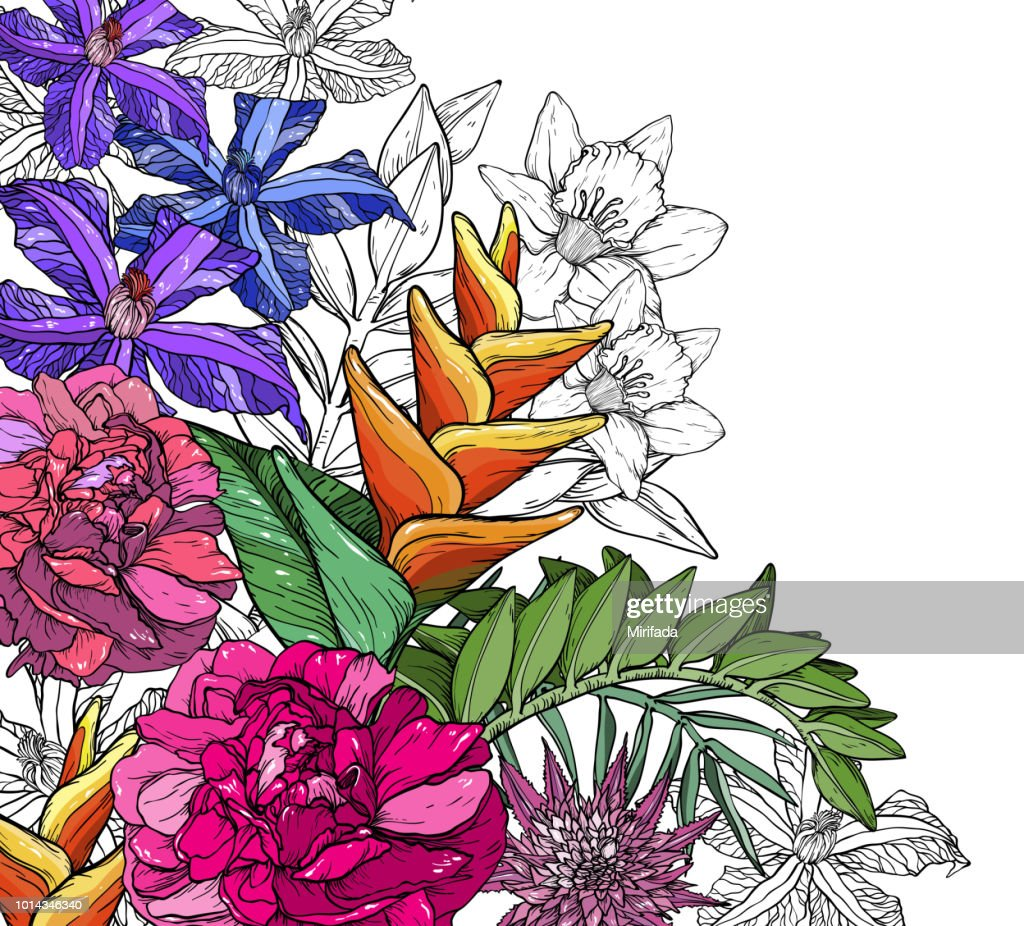 Floral background with Clematis, rose, peony, bird of paradise flowers and palm leaves