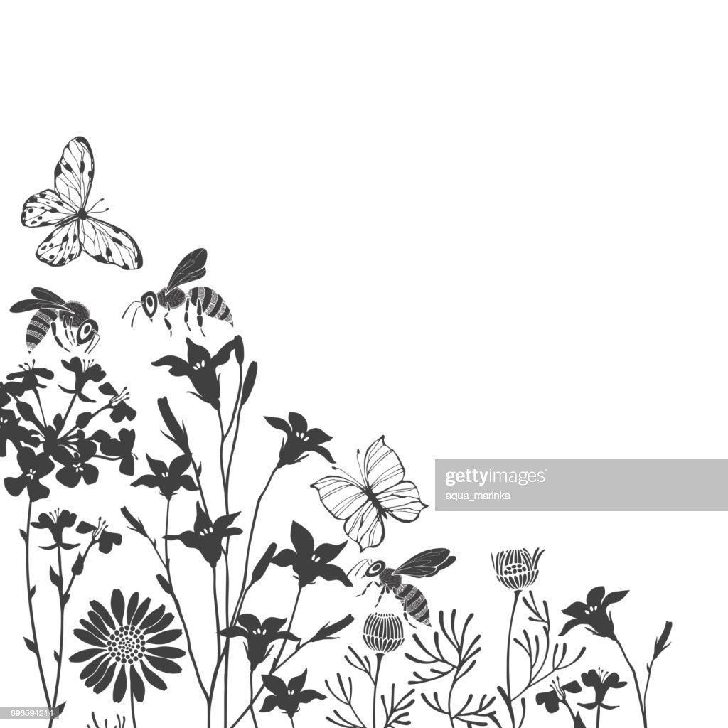 floral background with meadow flowers butterflies and bees vector corner illustration with place for text invitation greeting card black silhouettes on white background high res vector graphic getty images floral background with meadow flowers butterflies and bees vector corner illustration with place for text invitation greeting card black silhouettes on white background high res vector graphic getty images