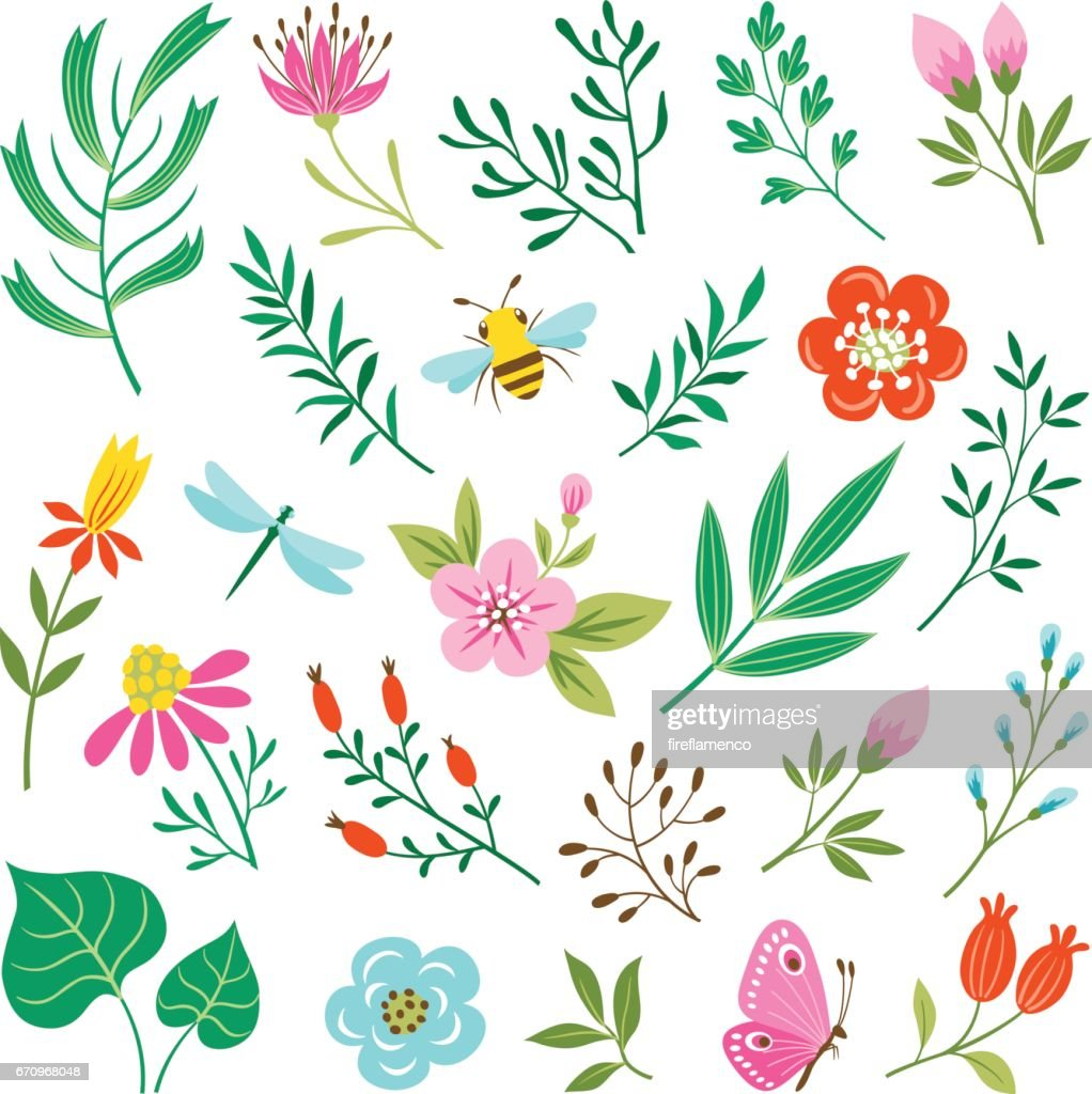 Floral design elements and insects