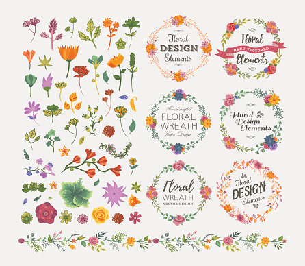 Floral Design Elements - gettyimageskorea