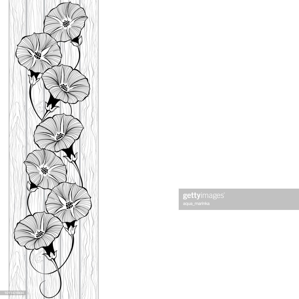 Floral design with bindweed on the texture of wood. Vector illustration with place for text.  Greeting card, invitation or isolated elements for design. Vertical composition.