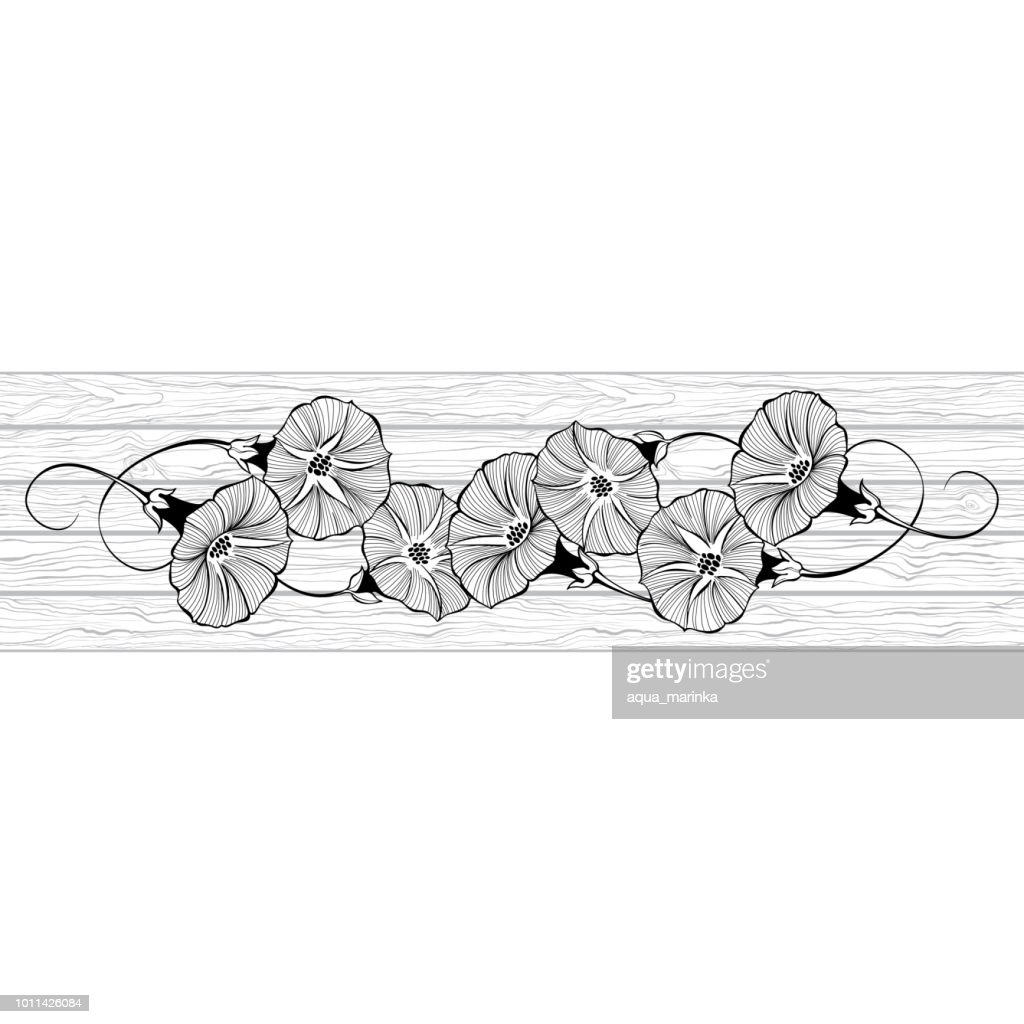Floral design with bindweed on the texture of wood. Vector illustration with place for text.  Greeting card, invitation or isolated elements for design.