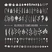 floral elemnts