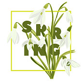 Floral hand drawn colored card with snowdrops. Modern typography text Spring