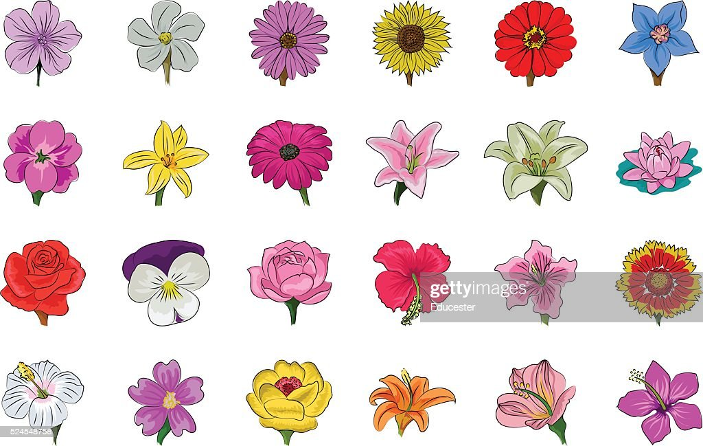 Floral Hand Drawn Colored Vector Icons 1
