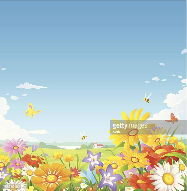 floral meadow - spring stock illustrations, clip art, cartoons, & icons