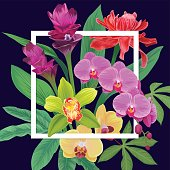Floral pattern vanda orchid, red torch ginger, curcuma tulips flowers and leaves on dark background.