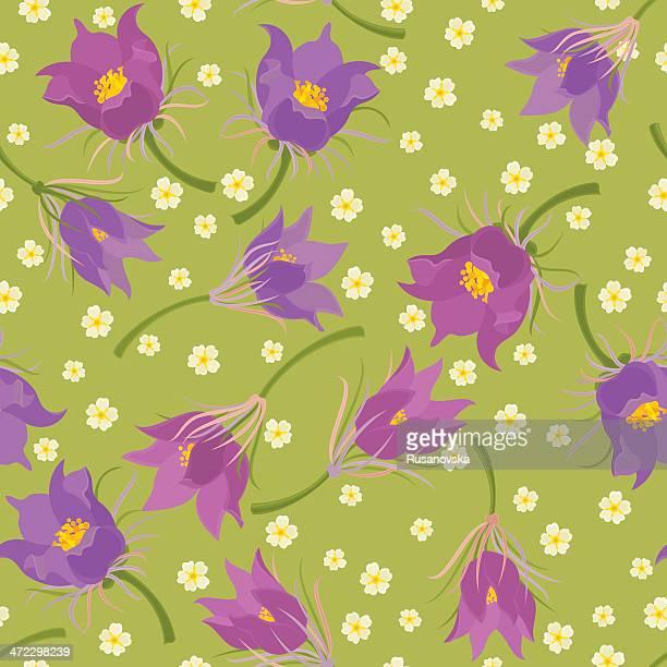 Floral Seamless Pattern (Pasqueflower)