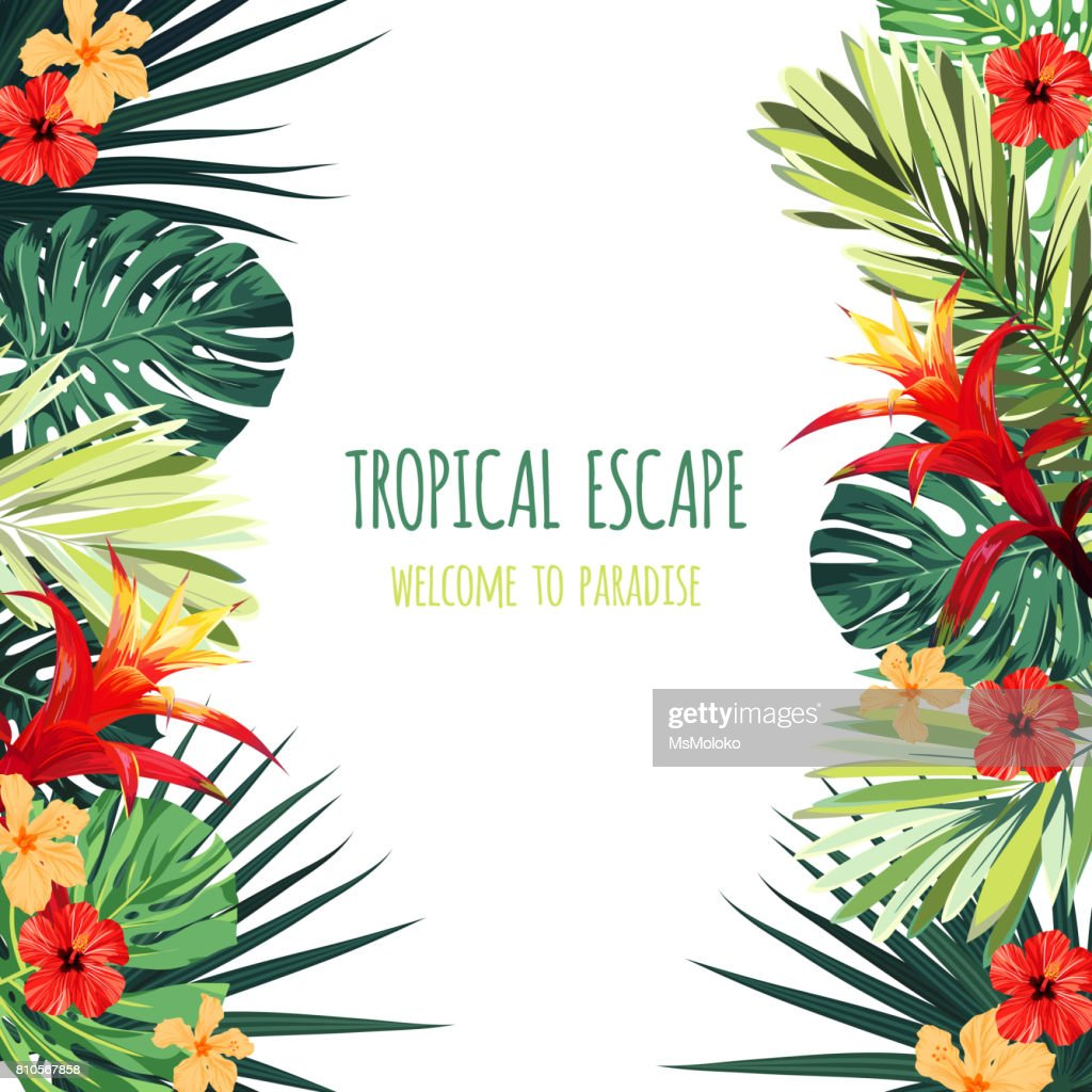 Floral square postcard design with guzmania and hibiscus flowers, monstera and royal palm leaves. Exotic hawaiian vector background