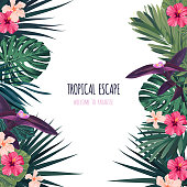 Floral square postcard design with hibiscus flowers, monstera and royal palm leaves. Exotic hawaiian vector background