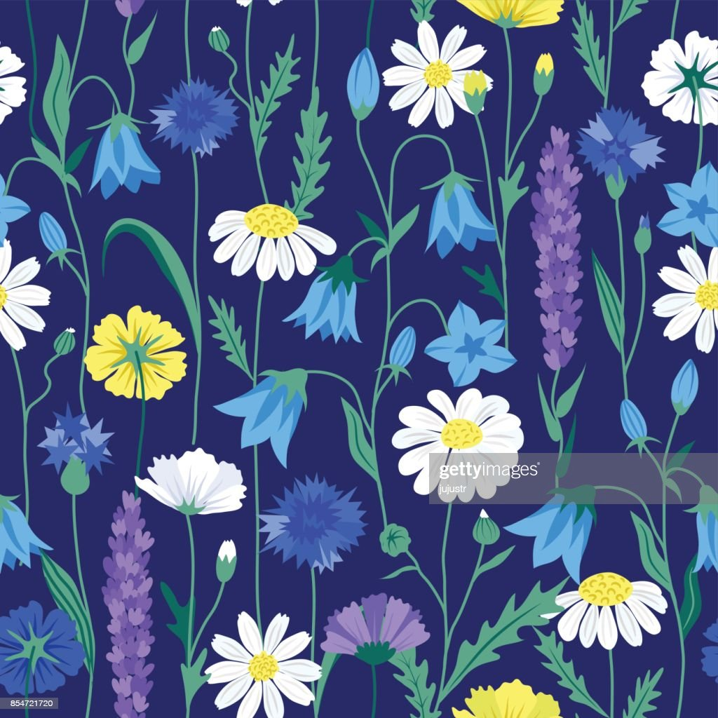 Floral summer seamless pattern + chamomiles + cornflowers + buttercups + lupine + bellflowers in bright colors on dark blue background