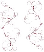 floral swirl borders for your design