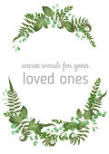 Floral vector background. Beautiful invitation with various leaves. Botanical illustration. Fern, eucalyptus, boxwood. Engraving style. Design elements