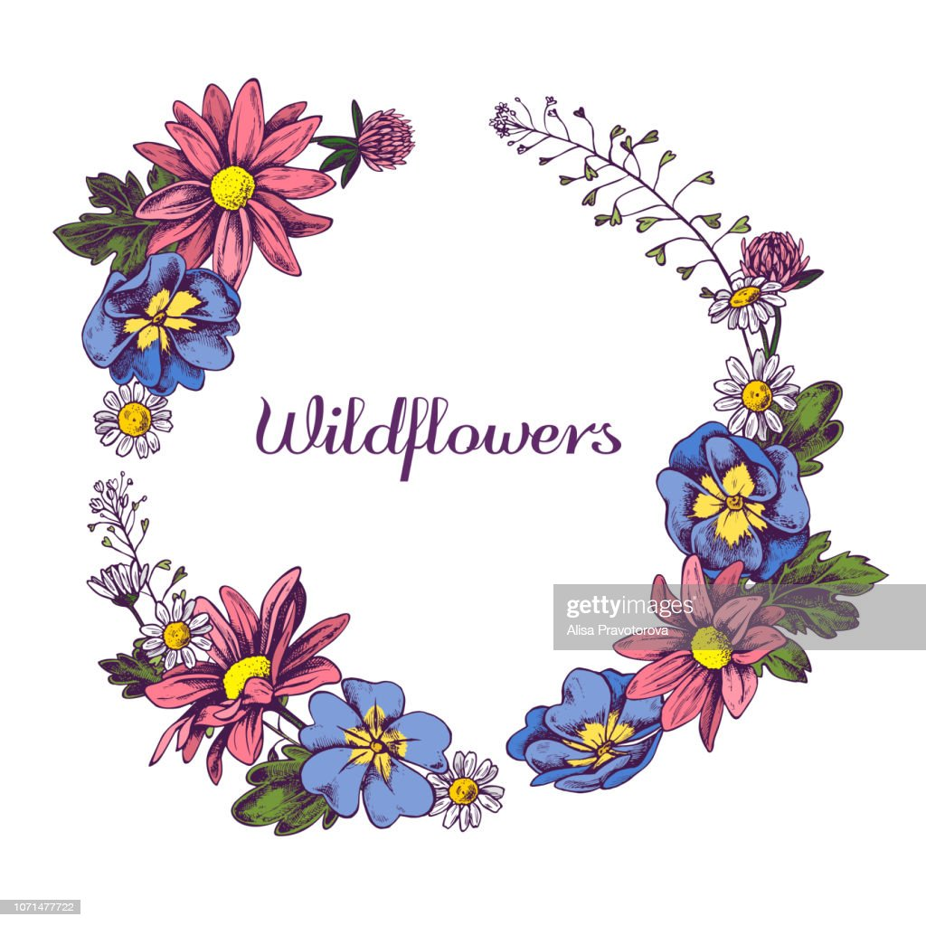 Floral Wreath of Wildflowers Hand drawn vector illustation