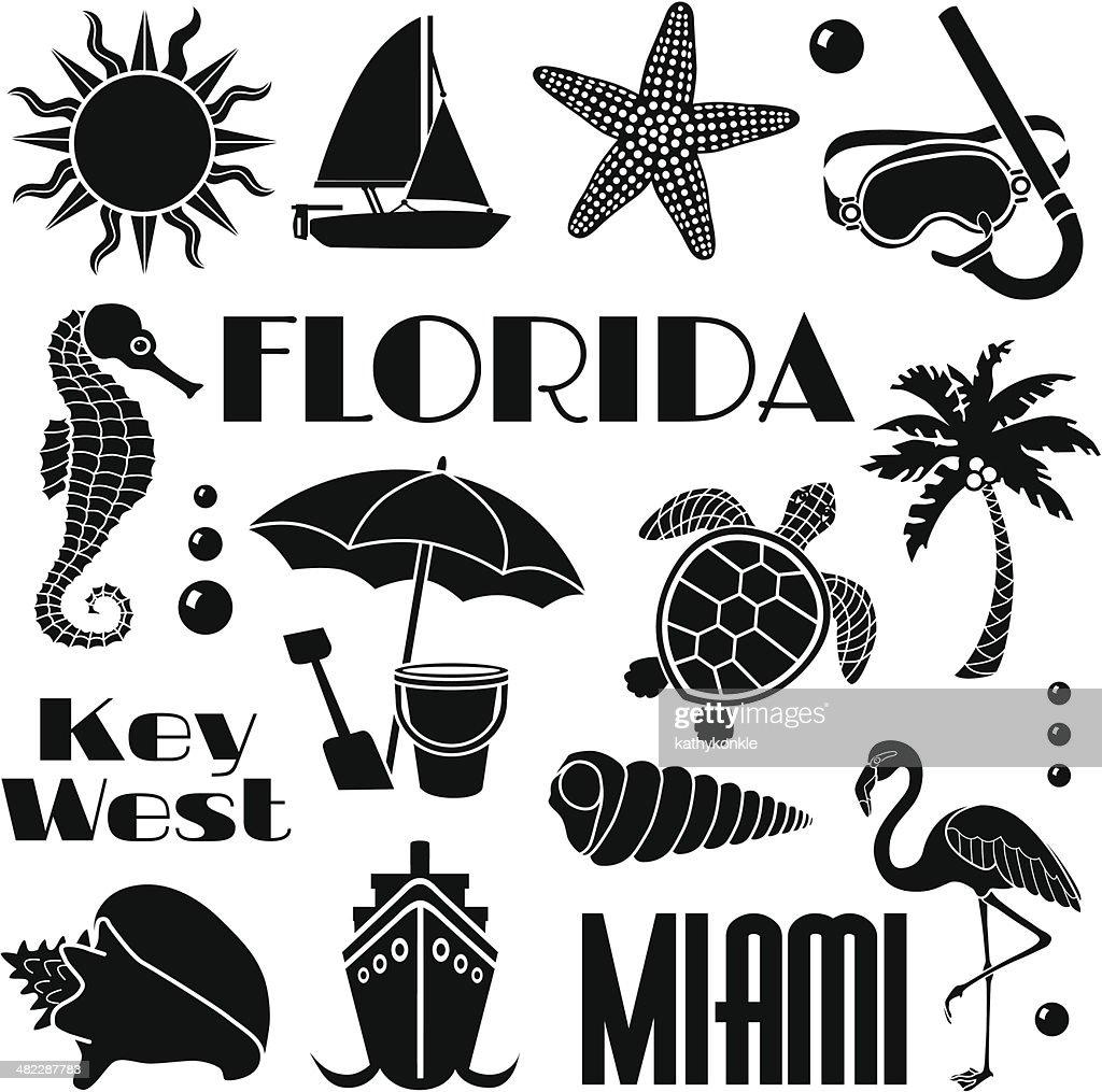 Florida Design Elements Vector Art   Getty Images