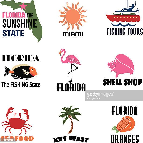 florida icons with text - flamingo stock illustrations, clip art, cartoons, & icons