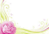 Flower background with copyspace: pink Rose