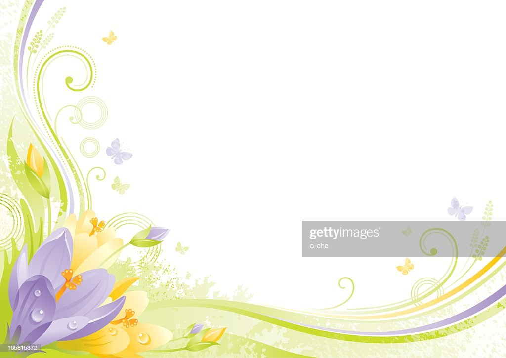 Flower background with copyspace: violet and yellow Crocus