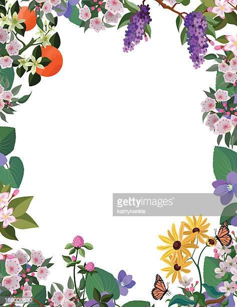 ilustrações de stock, clip art, desenhos animados e ícones de fronteira de flor moldura - laranjeira