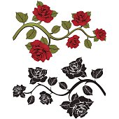 Flower branch roses. Set of red and black  branches. Floral