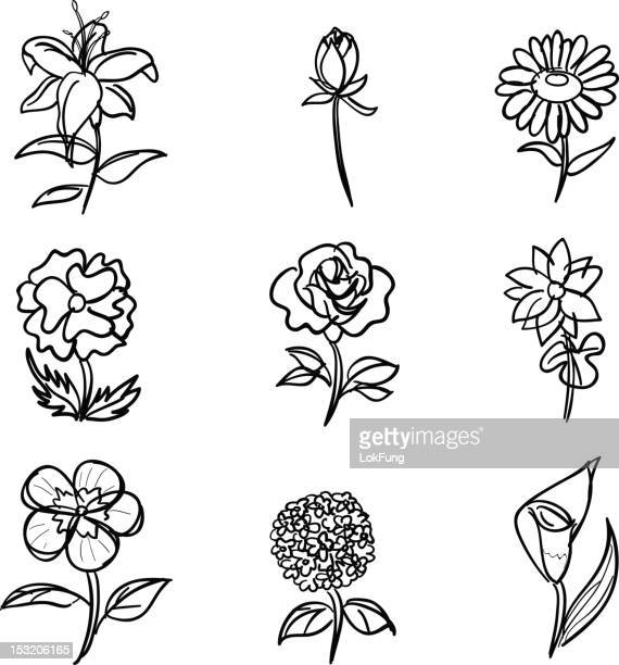flower collection in black and white - ranunculus stock illustrations, clip art, cartoons, & icons