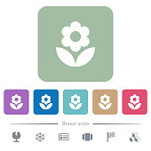 Flower flat icons on color rounded square backgrounds