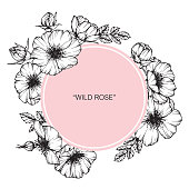 Flower frame of rose floral. Drawing and sketch with black and white line-art.